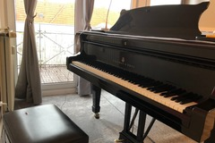 Renting out: Steinway Model A in a Sunny Studio